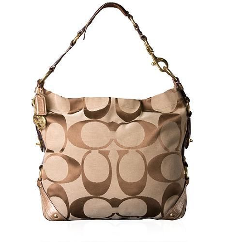 luxury fashion unique design catch Coach hobo bag. Handbags and Purses on Bags-Purses.com